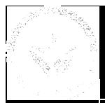 ISO - Panishop