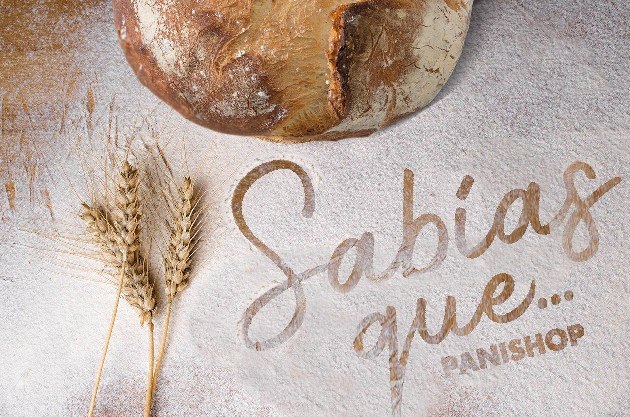 El pan se elabroa en 6 fases